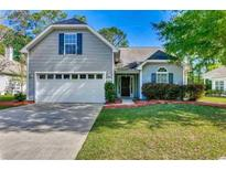 View 4612 Fringetree Dr Murrells Inlet SC